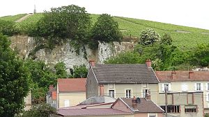 Chalk-cliff-at-Mareuil300